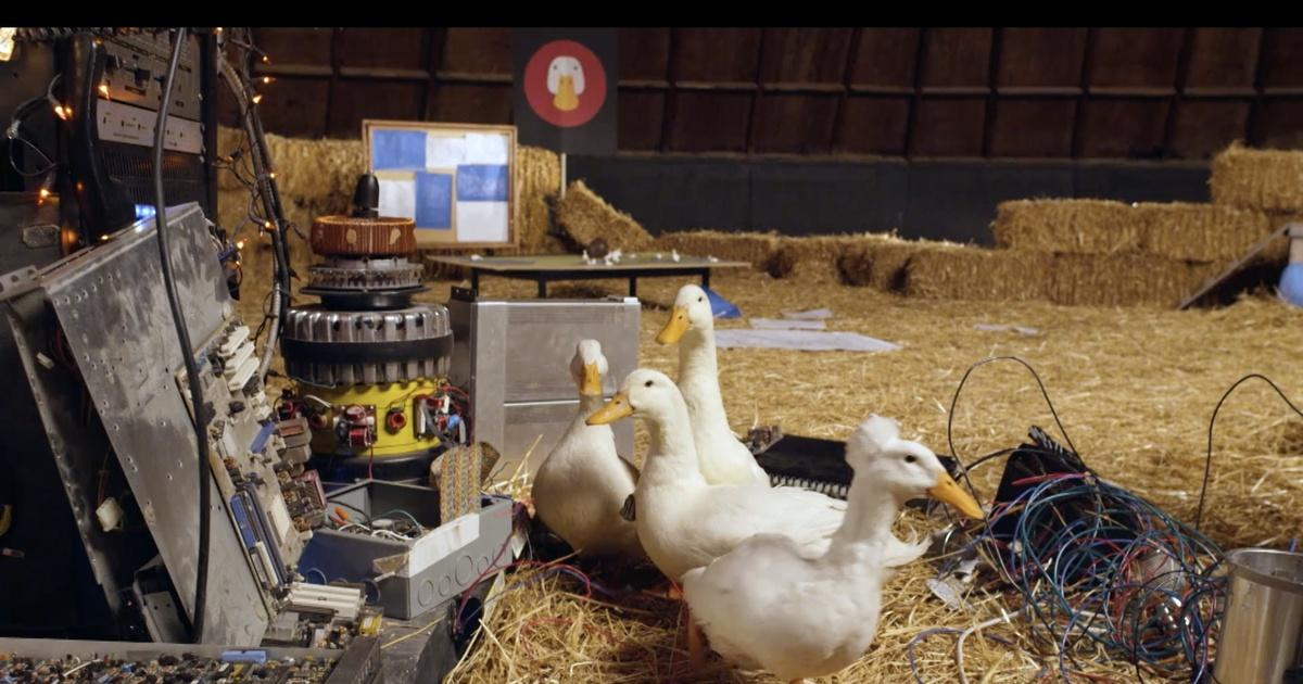 odds quad villainous ducks